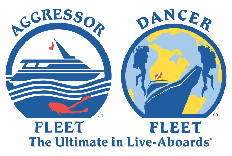 Aggressor Dancer Fleet